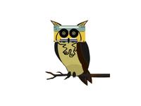 Cassette Owl