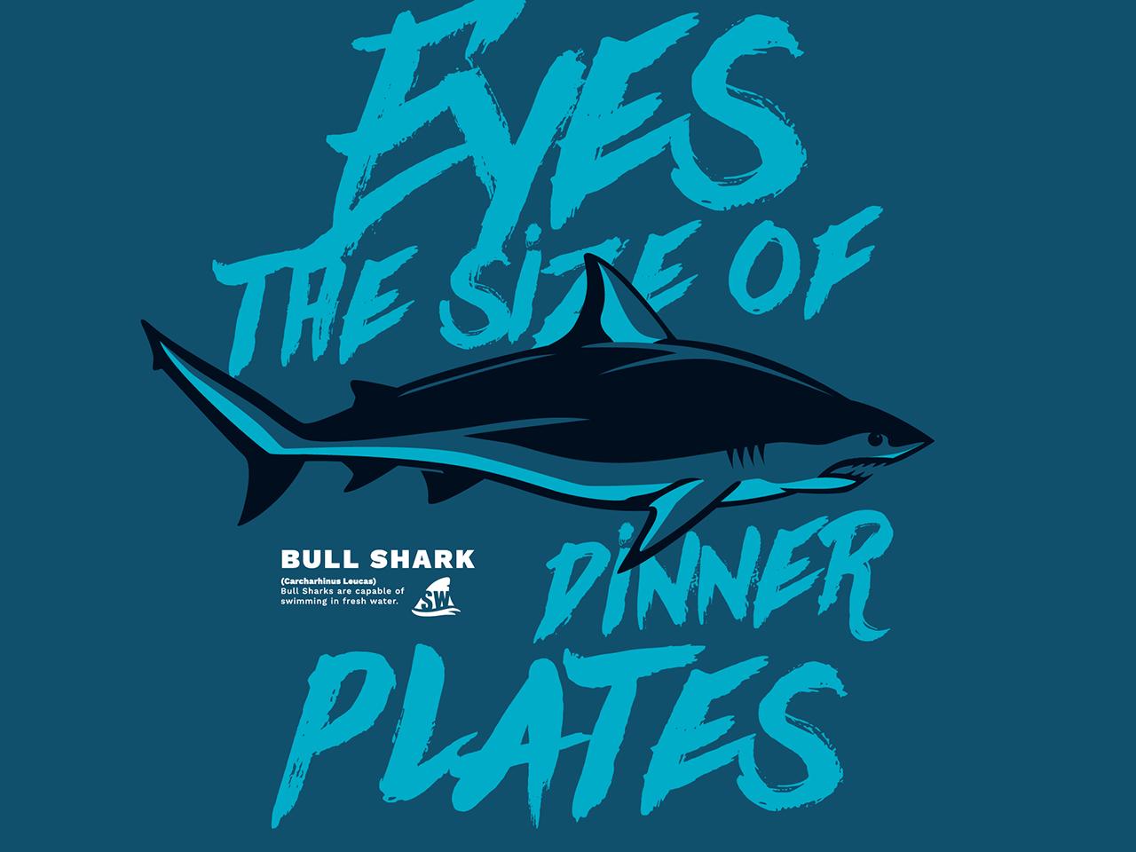 Pilot web shark week8