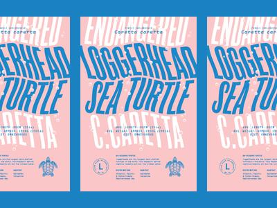 Alphabeast: Loggerhead Sea Turtle
