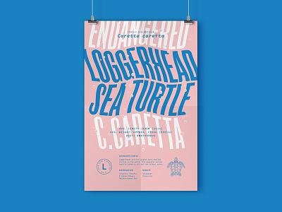 Posters!! ocean turtle endangered animals poster typography typehike