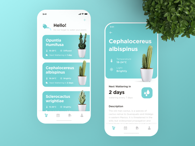 Watering Tracker Application cactus data ux ukraine tracker app grow watering plant app ui lviv design