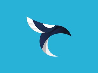 Dead Bird  illustration branding logo bird magpie