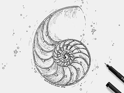 Sea shell for Submerge Music illustration shells pen work line art underwater sea shell music