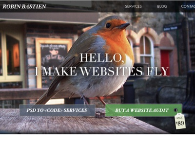 Websites Can Fly bird homepage web design psd