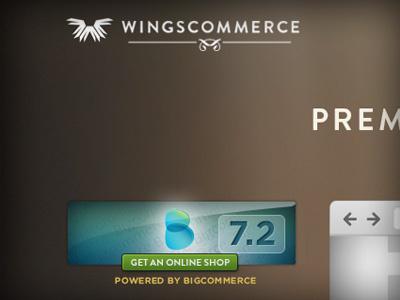 WingsCommerce 1 web-design web homepage