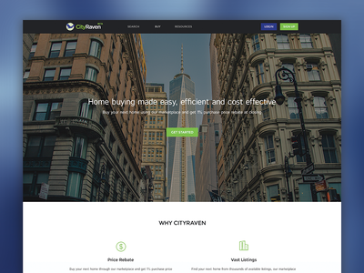Landing Page dark grey blue green light landing page