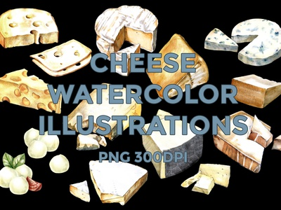 CHEESE LAYERED ILLUSTRATIONS layered isolated watercolor illustration creative market cheese