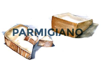 Parmigiano cheese watercolor