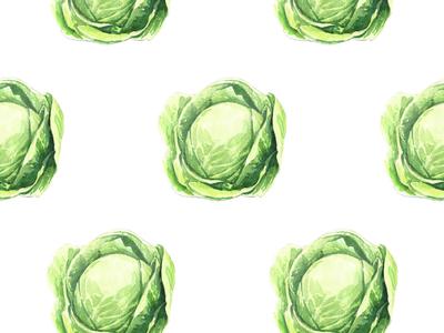 Cabbage watercolor