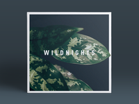 Wildnights CD Cover