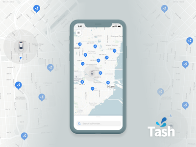 Tash Wash App appliaction iphone search bar car tracking app marker search iphone x mobile ui app design mapbox mapping