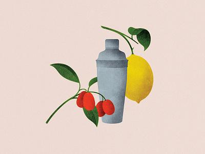 134 kumquats lemon citrus shaker drink