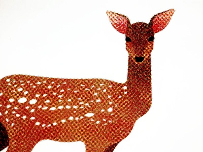 146 fauna animal deer
