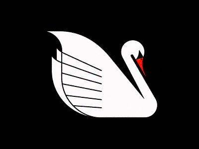 154 bird swan