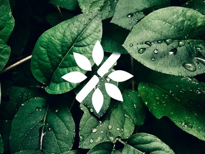 Green Bamboo Logotype green brand design clean design nature bamboo leaf clean minimalism logotype logo brands branding