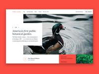 #designabovethefold ep.1 - Public Garden