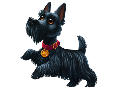 Scottish terrier dog fur collar illustration puppy black scotch scottish pet terrier dog