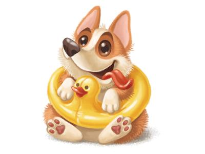 Corgi puppy summer cute funny duck rubber dog puppy corgi