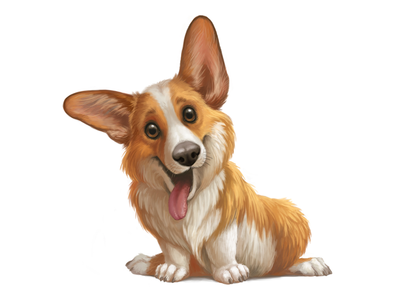 Welsh corgi puppy cute animal illustration funny welsh pet character cartoon dog corgi