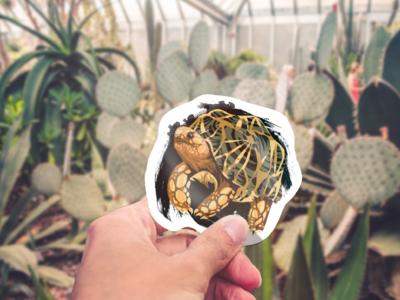 Geochelone platynota Sticker mockup splatter scales illustration vector tortoise turtle animal reptile sticker