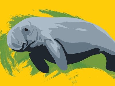 Dugong Dugon illustration splatter aquatic swim wild vector animal manatee dugong