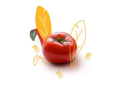 Tomato and Leaves flat illustration photo fruit leaves tomatoes