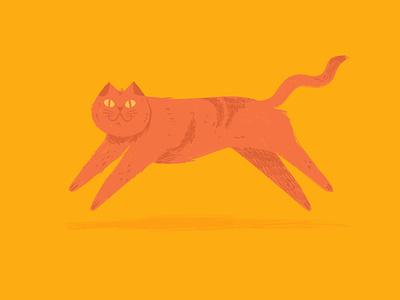 Sfigatto orange yellow ipad procreate illustration cat gatto