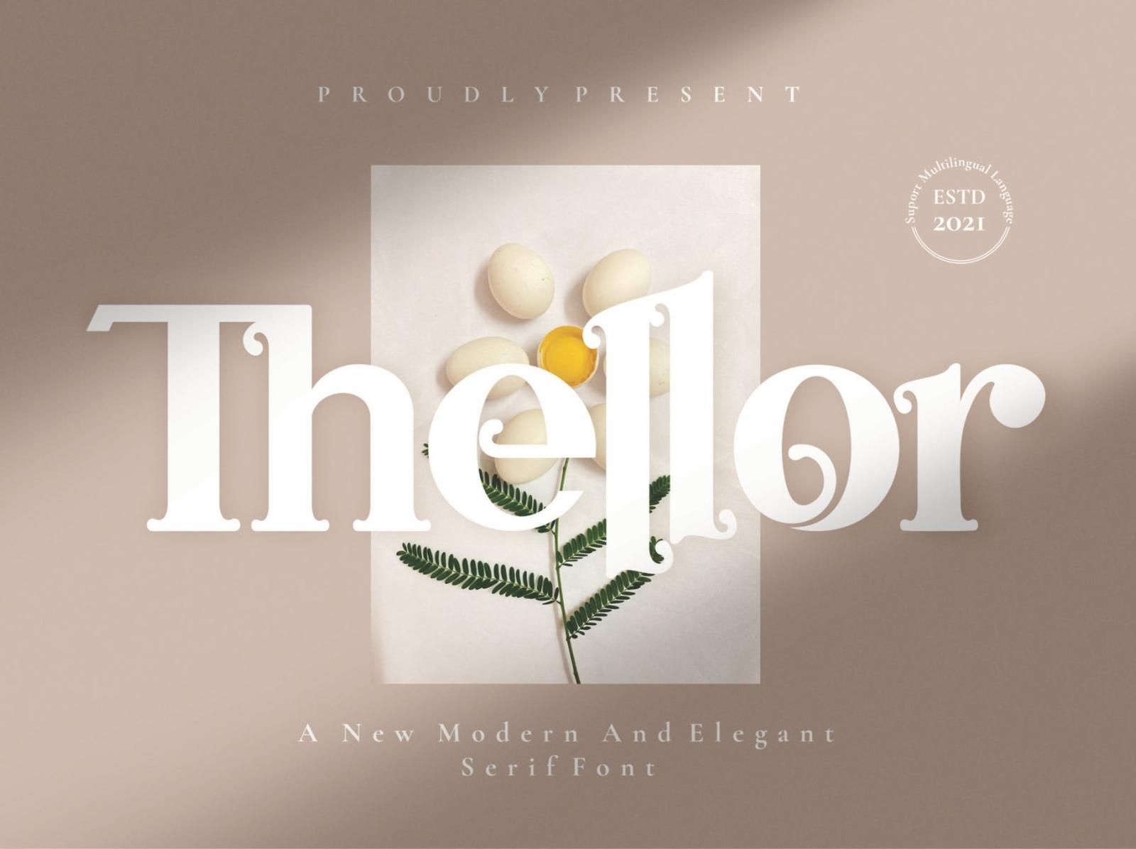 Thellor - Serif Font elegant asthetic display serif font ux vector ui logo app typography illustration graphic design design branding