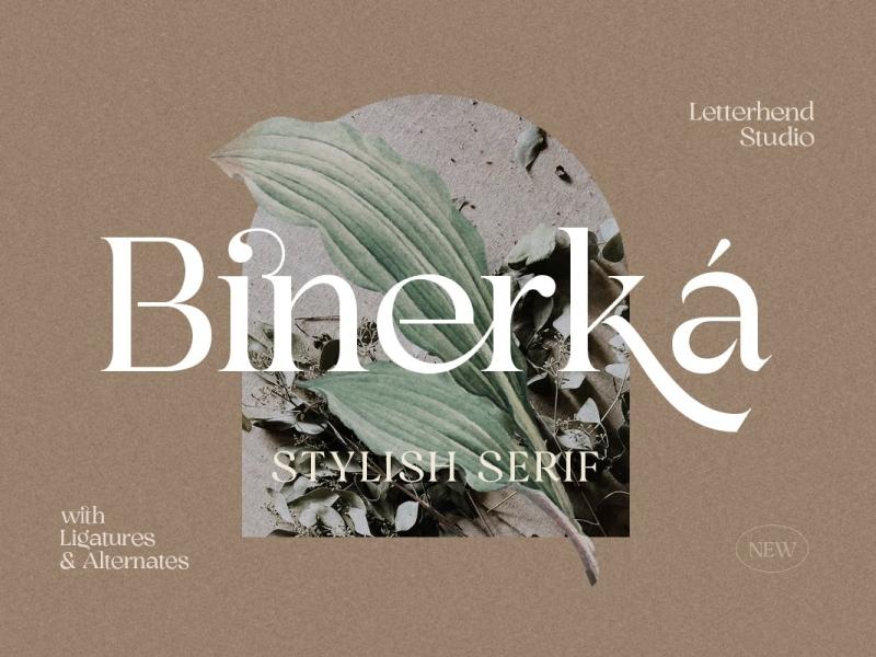 Binerka Display Font display font serif font serif stylish display modern font ux vector ui app logo typography illustration graphic design design branding