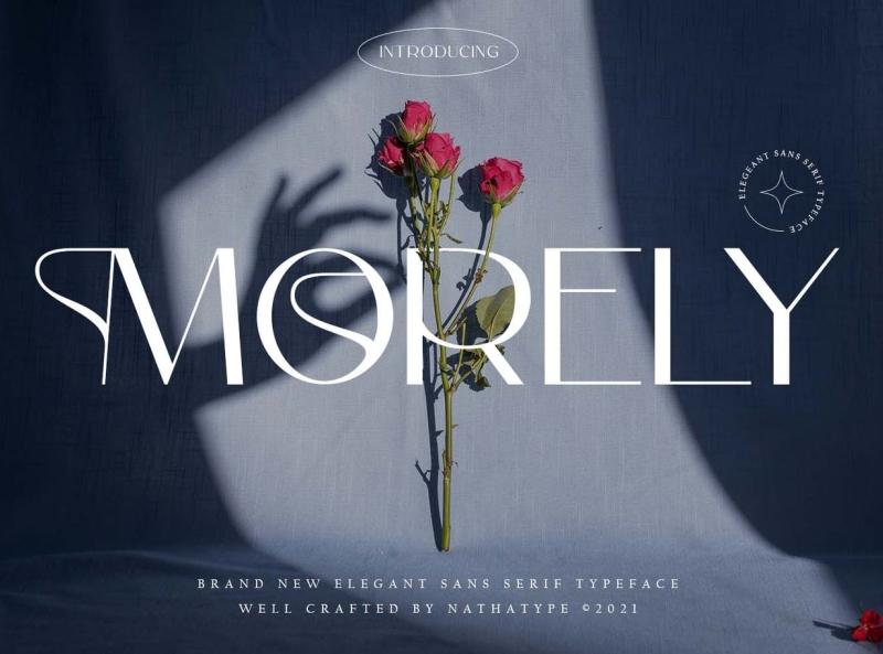 Morley Display Font display font display font ux vector ui logo app typography illustration graphic design design branding