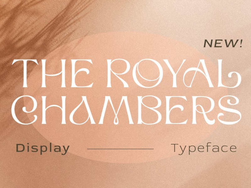 Royal Chambars Display Font display font royal display font ux vector ui logo app typography illustration graphic design design branding