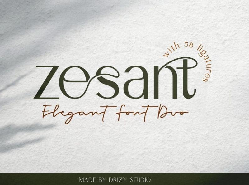 Gesant Elegant Font display font elegant display font ux vector ui logo app typography illustration graphic design design branding