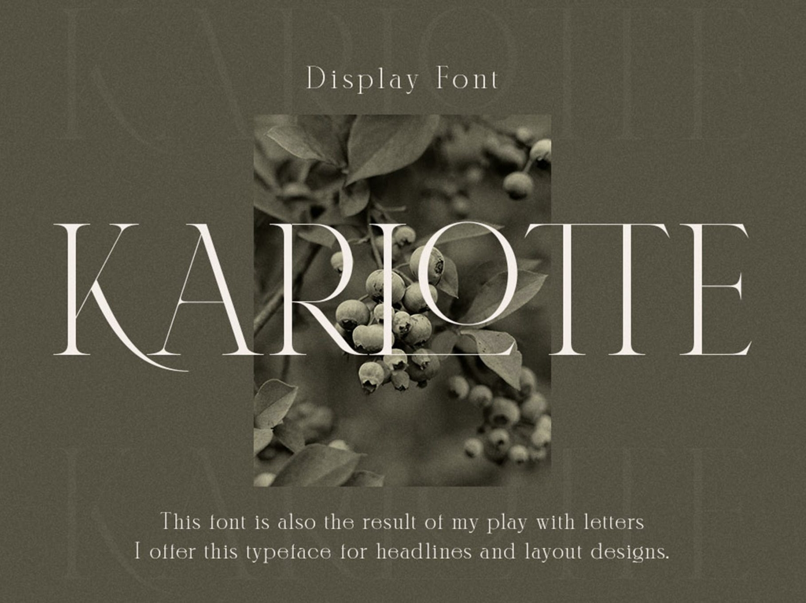 Karlotte - Elegant Serif Font serif font serif elegant typeface font display ux vector ui logo app typography illustration graphic design design branding
