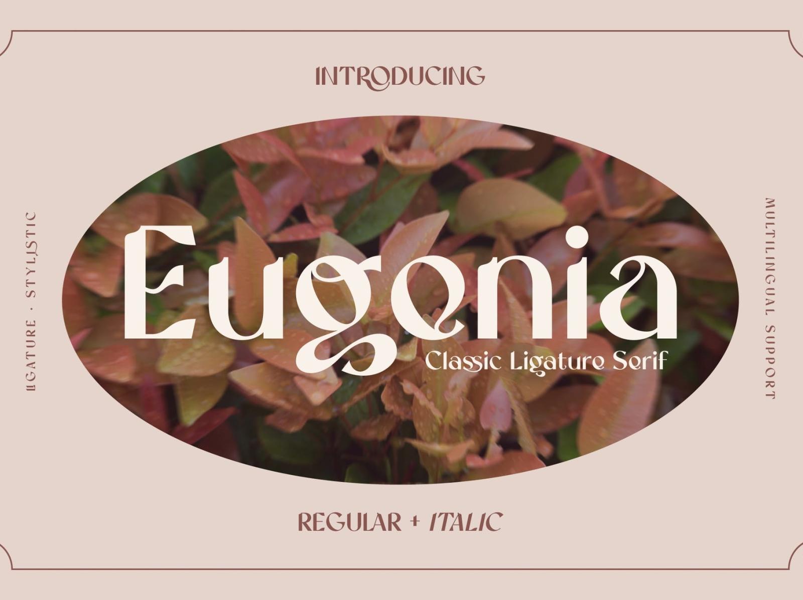 Eugenia Vintage Serif Font sans serif font vintage font display serif ux vector ui logo app typography illustration graphic design design branding