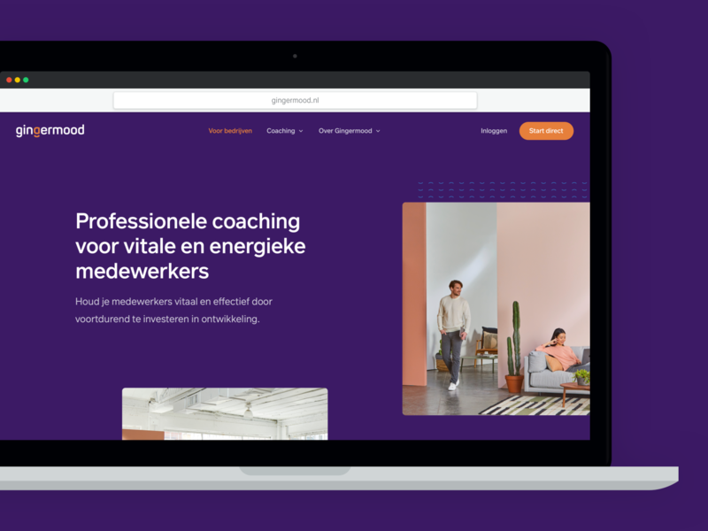 Gingermood - Professional Coaching Website matching coaching website design website web