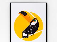 Toucan full image