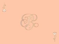 Fancy R