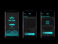 Veyda - Cryptocurrency Onboarding Exercise