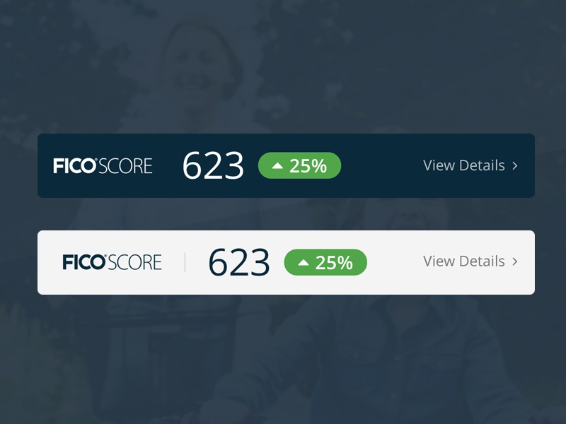 Credit Score Widgets widget fico credit score avant