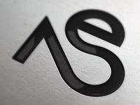 Eksarev-Nagornaya Studio Logo