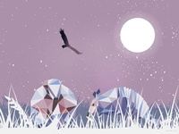 Armadillo in Fairy Night
