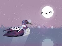Loon Bird Enjoy The Moon