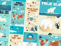 :::Polar Bears facts:::