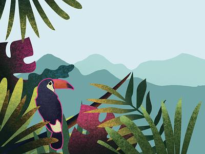 Brazil Illustration minimalist texture gradient flat vector illustration graphic design design branding