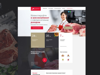 Meat processing plant business landing investments factory meat