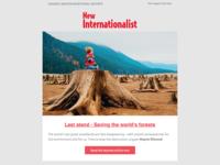 New Internationalist email newsletter redesign