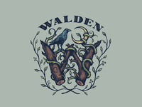 Walden Band Brand Exploration