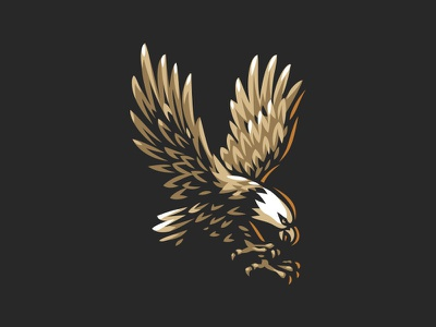 Eagle animal illustration logo eagle