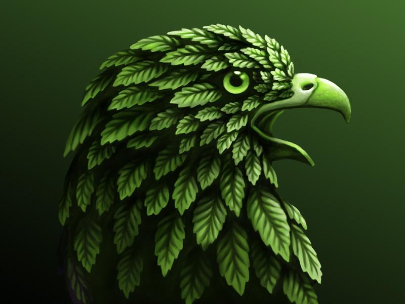 Hawk leaves hawk