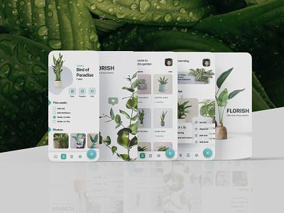 Florish App - Best care for your plant florish home plant house plants mobile app house tree plant plants green illustration website web desktop design ui